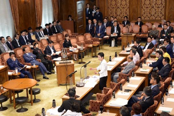 参院予算委員会集中審議